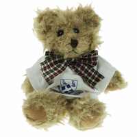 15cm Windsor Bear With T-Shirt