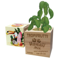 Custom Printed Eco Friendly Plant Pot Cubes
