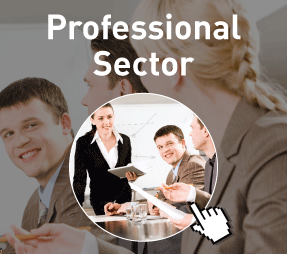 Professional Sector